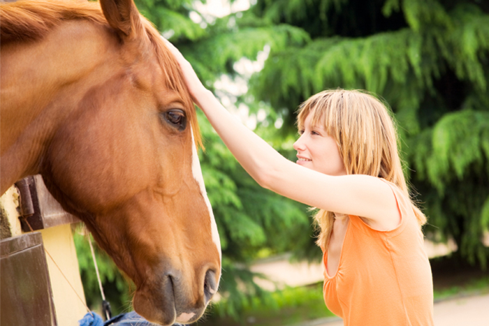 horse-riding-experience